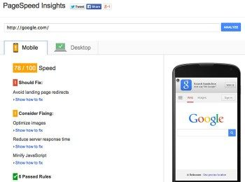 Screenshot of the Google PageSpeed SEO test